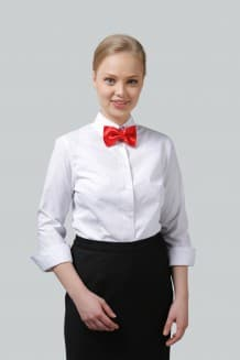 Блузка женская классическая с рукавом 3/4 и отложным воротником на стойке